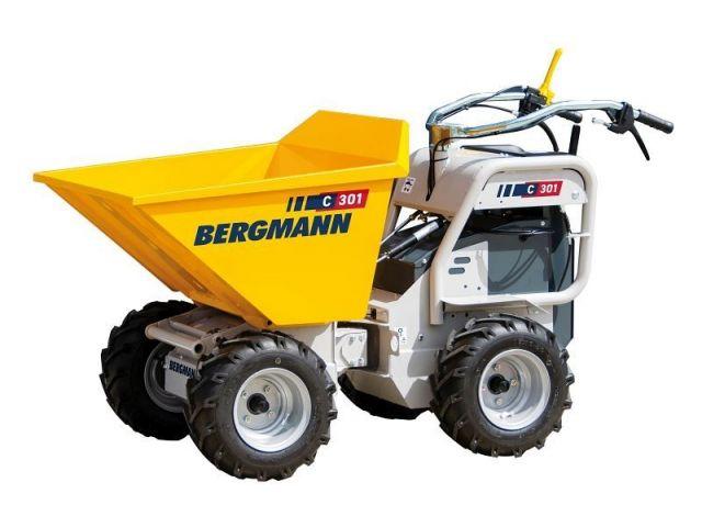 Bergmann C301e
